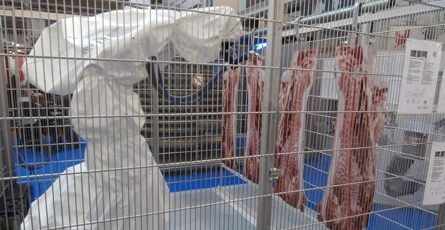 Картинки по запросу переработка мяса роботы